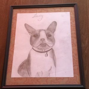 ♥️Lucy the Boston Terrier Pencil Art